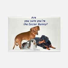 Are you the Easter Bunny Dogs Rectangle Magnet