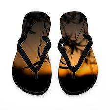 Michigan Sunset Flip Flops