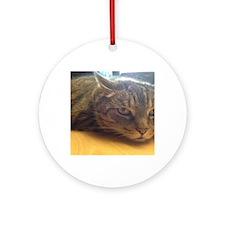Sleepy Cat Round Ornament