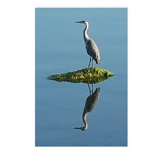 Heron Reflection Postcards (Package of 8)