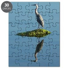 Heron Reflection Puzzle