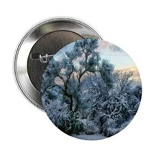 "mesquite tree snow 2.25"" Button"