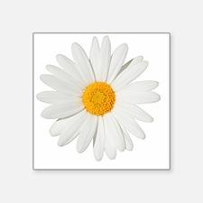 """Daisy Square Sticker 3"""" x 3"""""""
