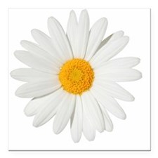 "Daisy Square Car Magnet 3"" x 3"""