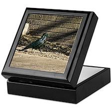 Petrified Forest Crow Keepsake Box