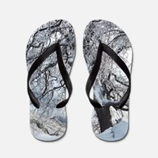 Winter Willow Flip Flops