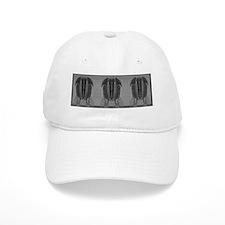 Grayscale Trilobite Repeat Baseball Cap