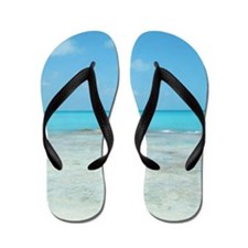 Cancun Lagoon Flip Flops