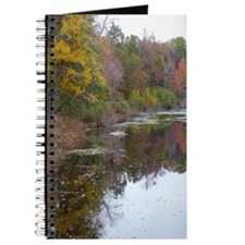 Pond In The Fall Journal