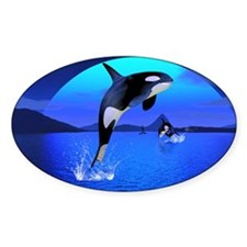 orca_35_21_o_wall_pell_449_H_F Decal