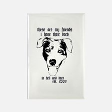 TO HELL AND BACK PITBULL RESC Rectangle Magnet (10