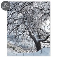 Winter Willow Puzzle