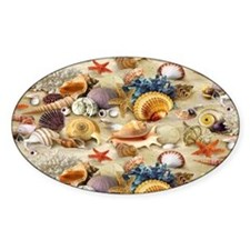 Seashell Decal