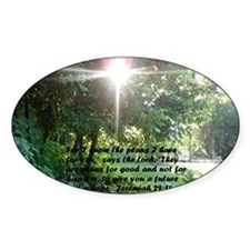 Sunbeam of Hope/Scripture Decal