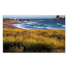 California Coast Decal