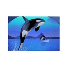 orca_stadium_hell_h_front Rectangle Magnet