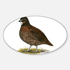 Tennessee Red Quail Decal