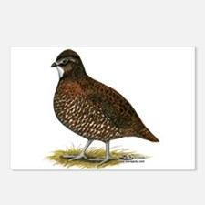 Tennessee Red Quail Postcards (Package of 8)
