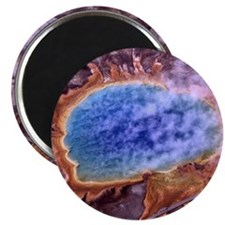 Grand Prismatic Spring Magnet