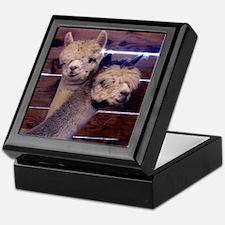 alpacka frame tile Keepsake Box