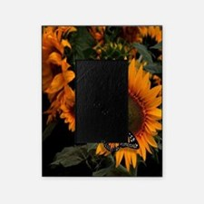 Sunflower Radiance Monarch Butterfly Picture Frame