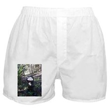 g'nome Boxer Shorts