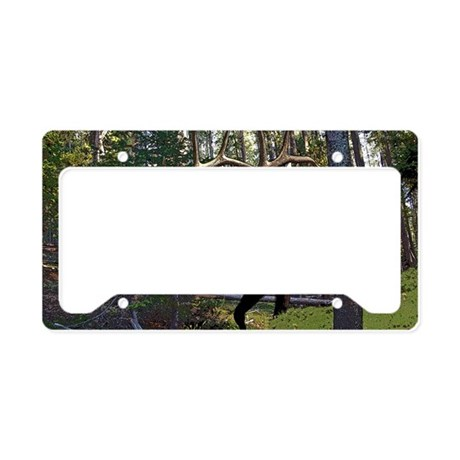Bell Elk 3 License Plate Holder