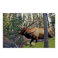 Bell Elk 3 Postcards (Package of 8)