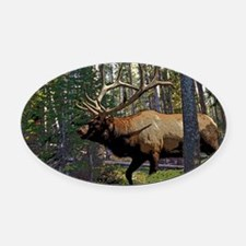 Bell Elk 3 Oval Car Magnet