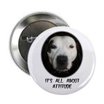 IT'S ALL ABOUT ATTITUDE (PIT BULL FACE) Button