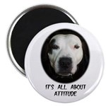 IT'S ALL ABOUT ATTITUDE (PIT BULL FACE) Magnet