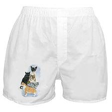 Cats Boxer Shorts