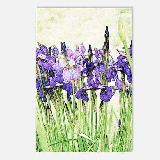 Irises Postcards (Package of 8)