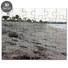 Kailua Beach Puzzle