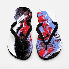 Mitt Romney Flip Flops