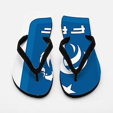 France Flip Flops