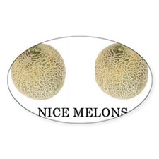 nice melons Decal
