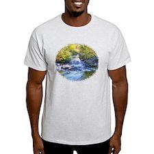 sabino canyon stream T-Shirt