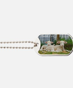 Thank You Cards ~ Buddy Lambs Dog Tags