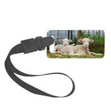 Ewephorics Buddy Lambs Luggage Tag