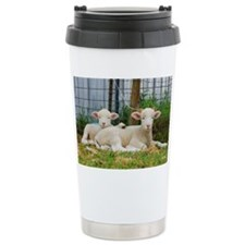 Buddy Lambs-signed by photograp Travel Mug