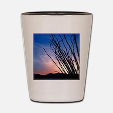 Ocotillo Night Shot Glass