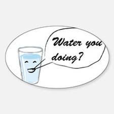 Water you doing? Decal