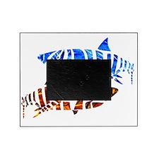 blue shark Picture Frame