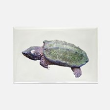 alligator snapping turtle Rectangle Magnet (10 pac