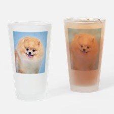 Funny Pomeranian Drinking Glass