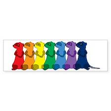 Rainbow Ferrets 2 Bumper Sticker