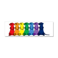 Rainbow Ferrets 2 Car Magnet 10 x 3