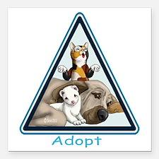 """Adopt Animals Square Car Magnet 3"""" x 3"""""""