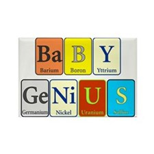 Baby Genius Rectangle Magnet